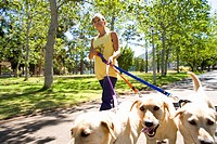 Woman walking dogs in park, low angle view