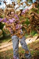 girl throughs autumn foliage