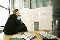 Businesswoman looking at flipcharts in an office