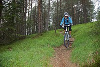Mountain bike rider on single trail in the forest near San Vigilio, Naturpark Fanes-Sennes-Prags, Trentino, South Tyrol, Italy, Europe