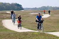 Tourists riding their bicycles in the inland dunes of the North Sea resort of Renesse, Schouwen_Duiveland, Zeeland, Netherlands, Europe