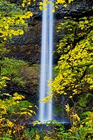 South Falls in autumn, Silver Falls State Park, Oregon, USA