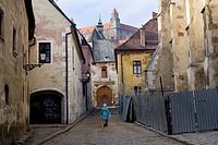 Old town and Bratislavia castle, Bratislava, Slovakia