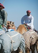 Camel herders, Dubai, UAE.