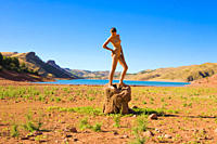 Naked young woman standing on a piece of wood in deserted landscape