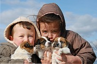 children and puppies