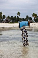 A woman carrying freshly harvested seaweed in a sack on her head, Jambiani, Zanzibar, Tanzania, Africa