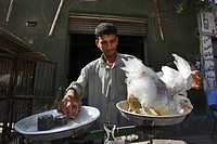 Man selling chicken, butcher, Bahariya Oasis, Egyptian Sahara, Egypt, Africa