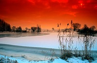 frozen pond, Germany, Lower Saxony