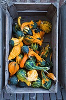 Pumpkins in wooden crate, overhead view