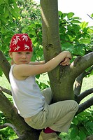 Girls, 5 years old, wearing a pirate bandana, on the top of a climbing tree