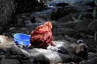 Hindi woman washing laundry in the river, Leh, Ladakh, North India, Himalaya