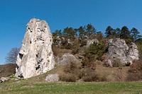 Burgsteinfelsen rock near Dollstein in the Altmuehltal valley, Bavaria, Germany, Europe