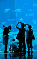 Huge saltwater aquarium of the Hotel Atlantis, The Palm Jumeirah, Dubai, United Arab Emirates, Arabia, Middle East, Orient