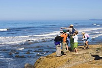 Tourists on excursion to the tidepools of the West Coast, Pacific Coast, Olympic National Park, Washington, USA