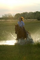 horse riding in the nature, Hungary, Puszta
