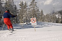 Reckless skier ignoring prohibition sign, illicitly skiing into the forest