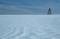 Endless vastness, raised hide in snow desert, Germany, Saarland