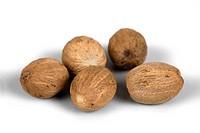 nutmeg, mace Myristica fragrans, nutmeg apples