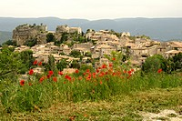 common poppy, corn poppy, red poppy Papaver rhoeas, picturesque village in Luberon Nature Park, France, Provence, Luberon