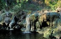 Hot springs, Tanzania, Selous Game Reserve