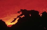 volcano Etna, eruption, Italy, Sicilia