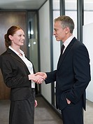 Businesspeople shaking hands (thumbnail)