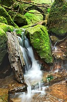 forest brook, little cascade with stones, Germany, Bavaria, Nature Park Spessart.