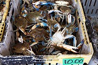 Westwego, Louisiana - Blue crabs on sale at a roadside seafood market