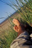 Person's legs on grass on sand dunes