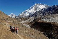 Trekking group at the Khumbu Glacier with Mount Nuptse, 7861m, Sagarmatha National Park, Khumbu Himal, Nepal, Asia