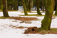 Box on snow_covered ground in park