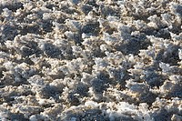 Ice crystals on a winter beach of St Peter_Ording, Eiderstedt Peninsula, Nordfriesland, Schleswig_Holstein, Northern Germany, Germany, Europe