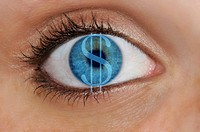 Eye with a dollar symbol superimposed over a blue iris, detail, symbolic for avarice
