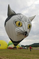 Hot air balloon _ in form af the face of a cat, Germany, Rhineland_Palatinate, Foehren