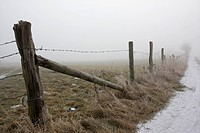 a barbed wire fence in fog, Germany, Rhineland_Palatinate, Eifel