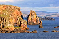steep cliffs and sea stacks Stoura Pund near Hillswick, United Kingdom, Scotland, Shetlands Islands, Northmavine