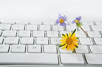 Concept of flowers growing from computer, ecology metaphor