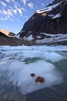 glacier at Mt. Edith Cawell, Canada, Alberta, Jasper National Park