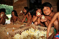 Embera Indians, children with chicks in Parará_Paru on the Chagres River, Panama, Chagres River Nationalpark, Parará_Paru