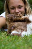 Border Collie Canis lupus f. familiaris, dog lying on lawn, in the background lies a girl, Germany