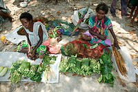 Women selling vegetables at a market, Heldsbach, Papua New Guinea, Melanesia