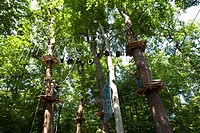 Ropes course with wooden platforms high in the trees, Kletterwald, Neroberg, Wiesbaden, Hesse, Germany, Europe