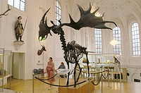 Hunting museum, Munich, Germany