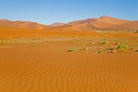 Africa, Namibia, Sossusvlei, Desert landscape