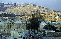 view over roofs of old city to Mount of Olives, Israel, Jerusalem