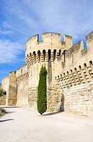 Fortified Wall in Avignon, Provence-Alpes-Cote d'Azur, France (thumbnail)