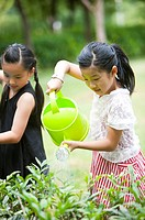 Two girls holding watering can and watering