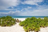 Beach Chairs, Taj Denis Island Resort, Denis Island, Seychelles