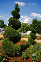 Botanic Gardens, Washington DC, United States, USA